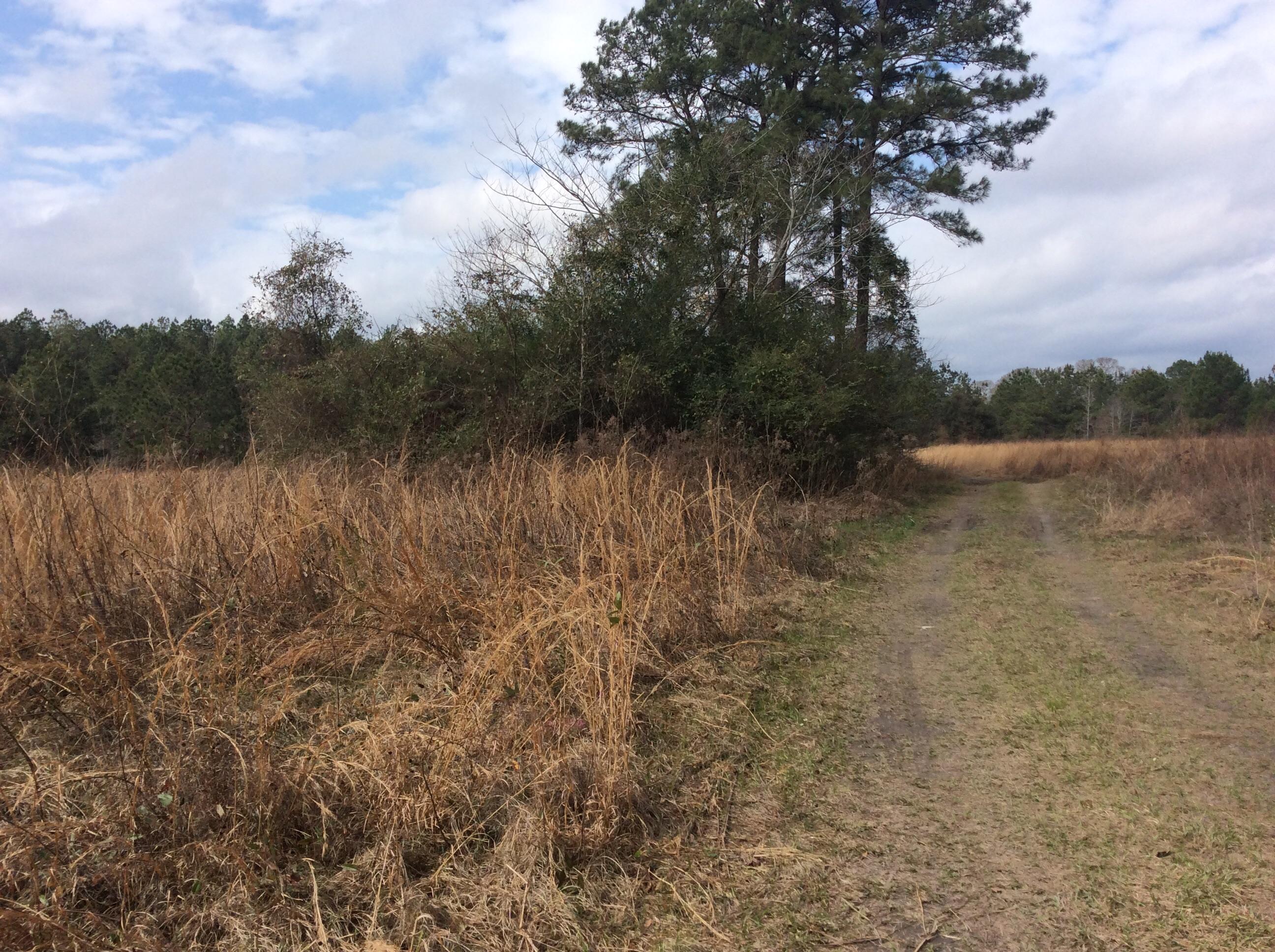 Rosepine land for sale,  TBD CULBREATH DR, Rosepine LA - $120,000