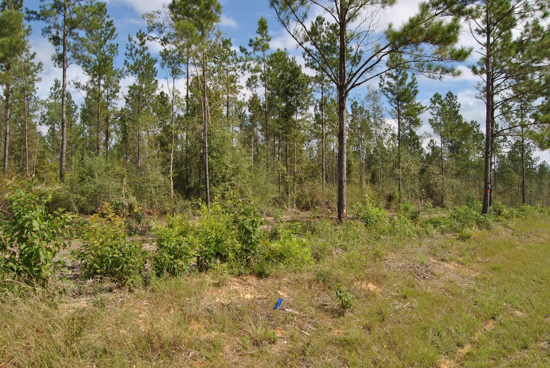 Reeves land for sale,  TBD Camp Pearl Loop North, Reeves LA - $64,750