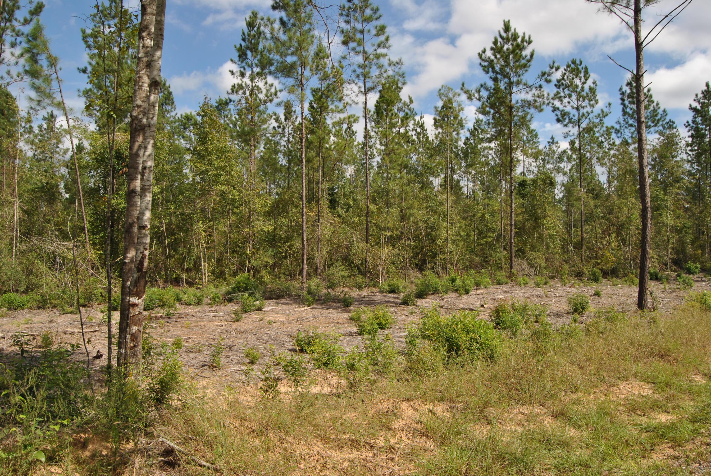 Reeves land for sale,  TBD Camp Pearl Loop North, Reeves LA - $62,250