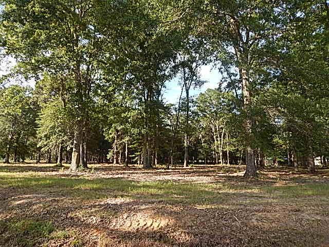 DeRidder land for sale,  TBD HICKMAN ROAD, DeRidder LA - $29,900
