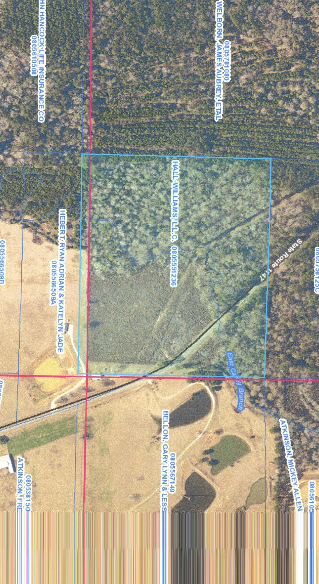 DeRidder land for sale,  TBD HWY 1147 (TRACT B), DeRidder LA - $20,000