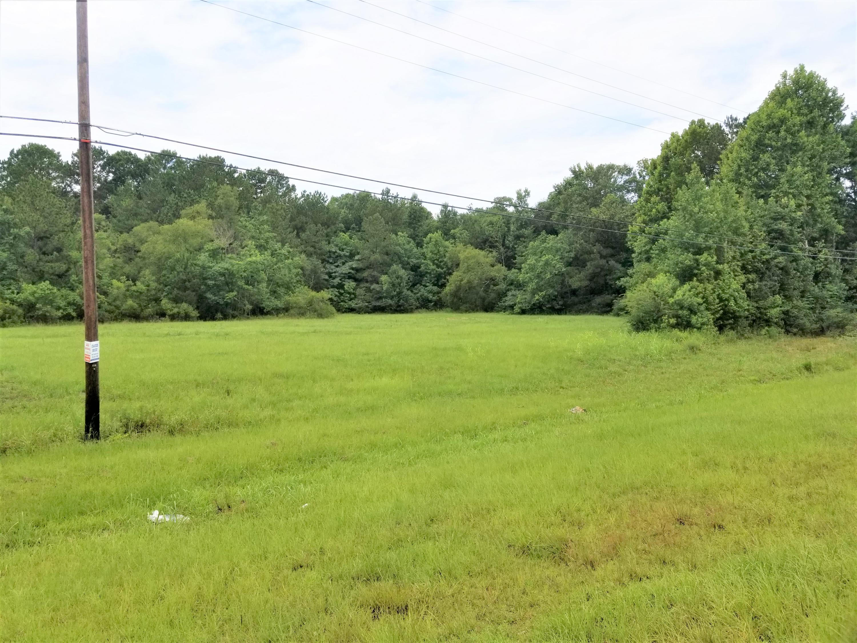 DeRidder land for sale,  TBD HWY 171, DeRidder LA - $225,000