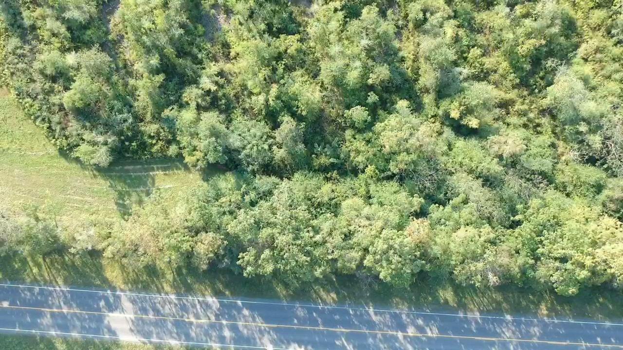 DeRidder land for sale,  TBD Hwy 27, DeRidder LA - $42,500