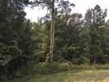 DeRidder land for sale,  TBD Hwy. 1147, DeRidder LA - $146,500
