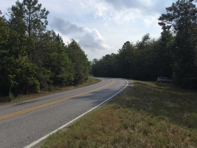 DeRidder land for sale,  TBD Hwy. 1147, DeRidder LA - $80,750