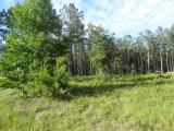 DeRidder land for sale,  TBD LANDER LOOP(1.47 ACRES ml), DeRidder LA - $22,900