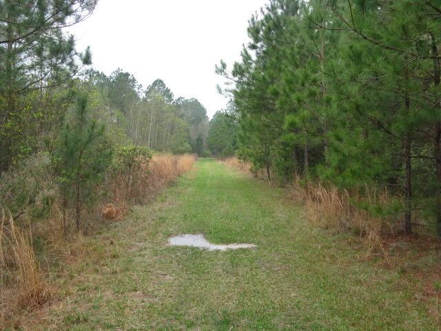 DeRidder land for sale,  TBD LITTLE HAPPY LANE LOT 72, DeRidder LA - $47,250