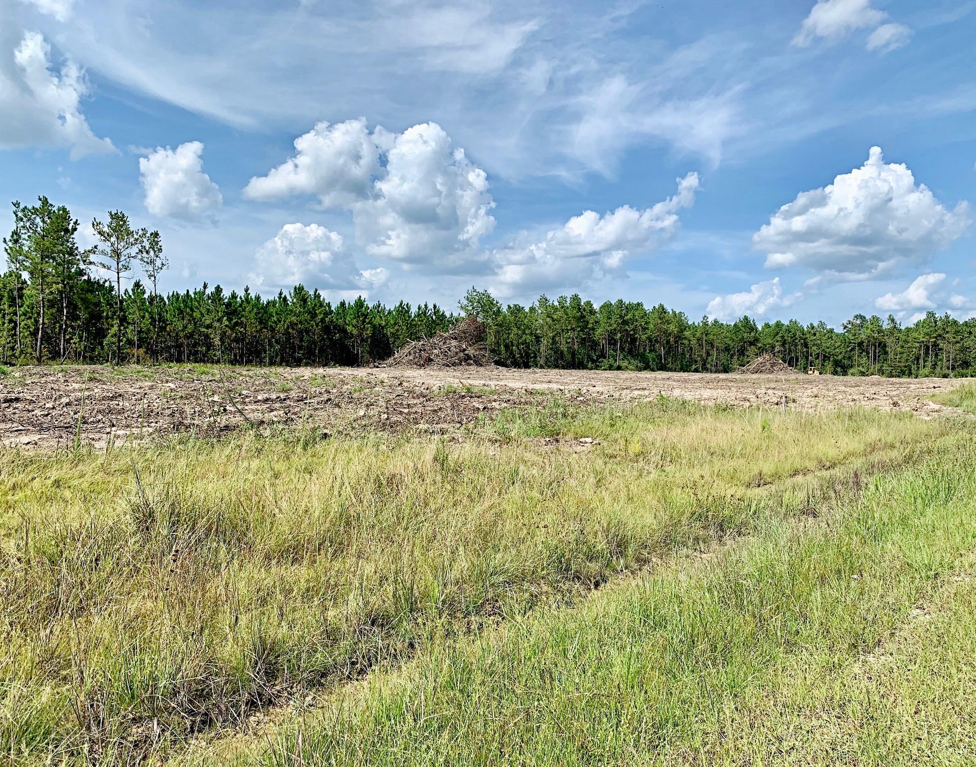 Ragley land for sale,  TBD Magnolia Church Rd, Lot 6, Ragley LA - $39,500