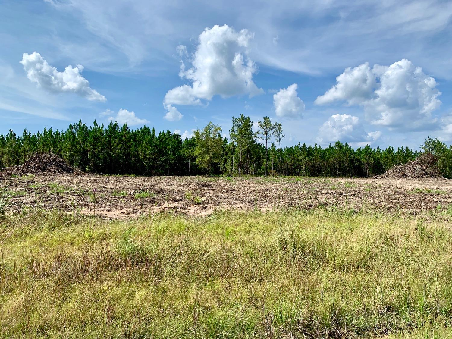 Ragley land for sale,  TBD Magnolia Church Rd, Lot 8, Ragley LA - $39,500