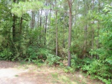 Anacoco land for sale,  TBD Marion Taylor Rd., Anacoco LA - $31,000