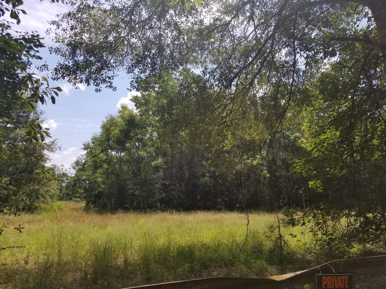 DeRidder land for sale,  TBD Parish Line Rd., DeRidder LA - $120,000