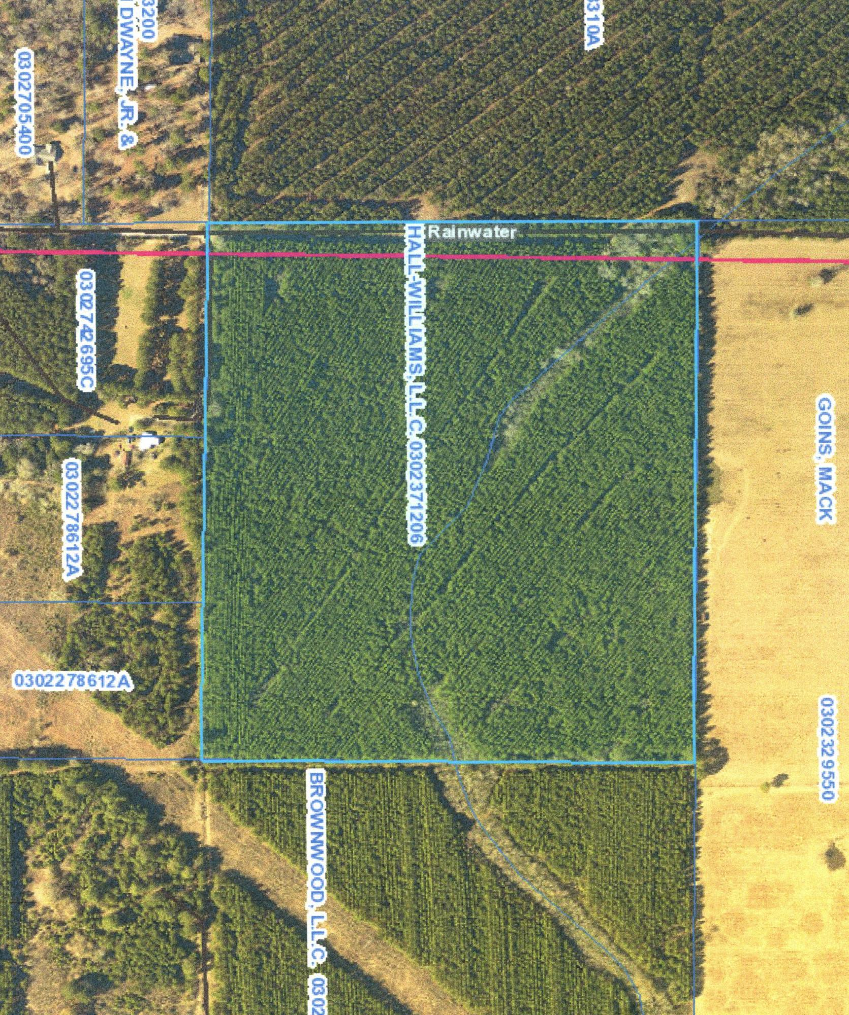 DeRidder land for sale,  TBD RAINWATER RD, DeRidder LA - $175,000