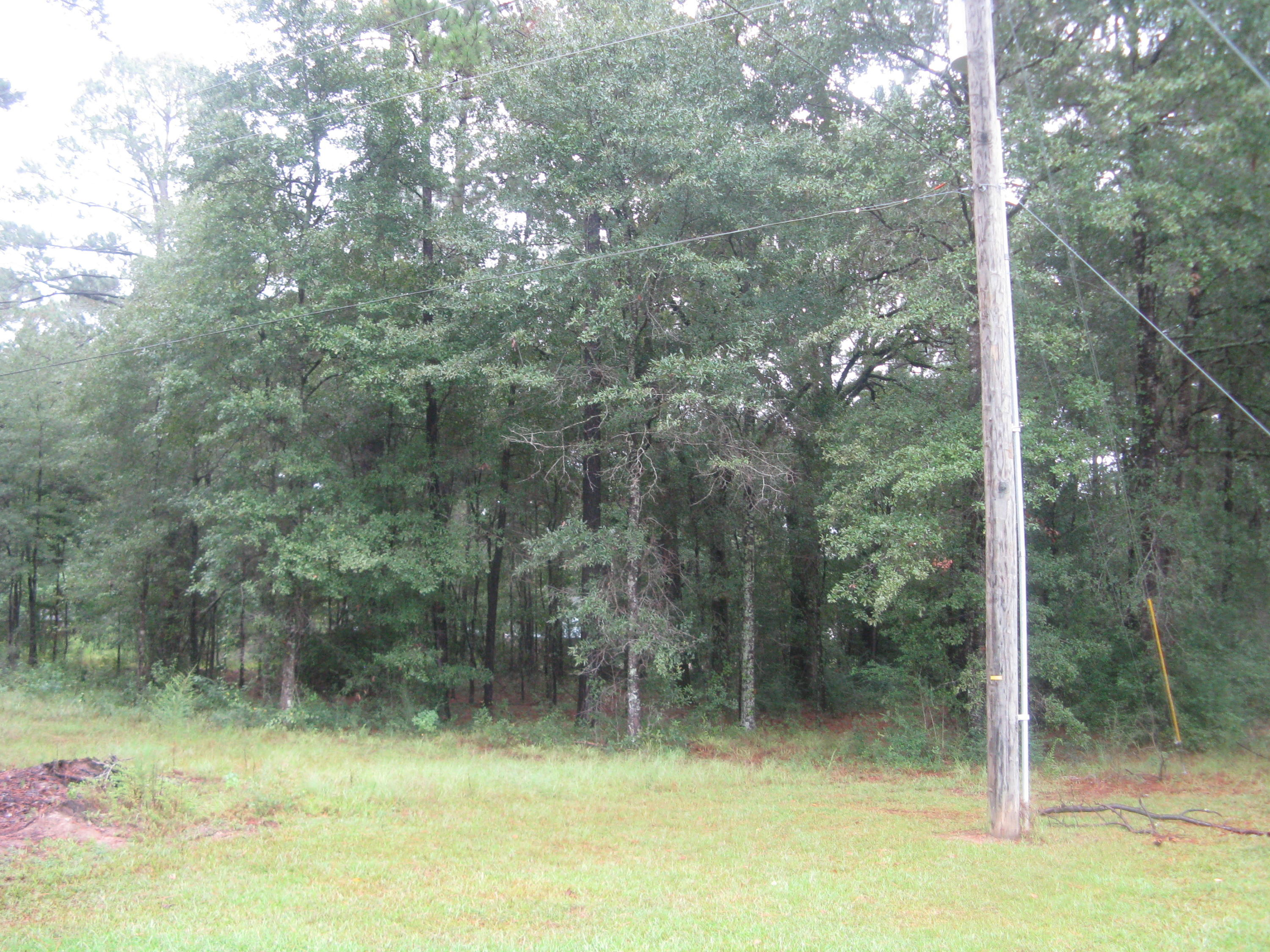 DeRidder land for sale,  TBD TWIN OAKS RD, DeRidder LA - $30,000