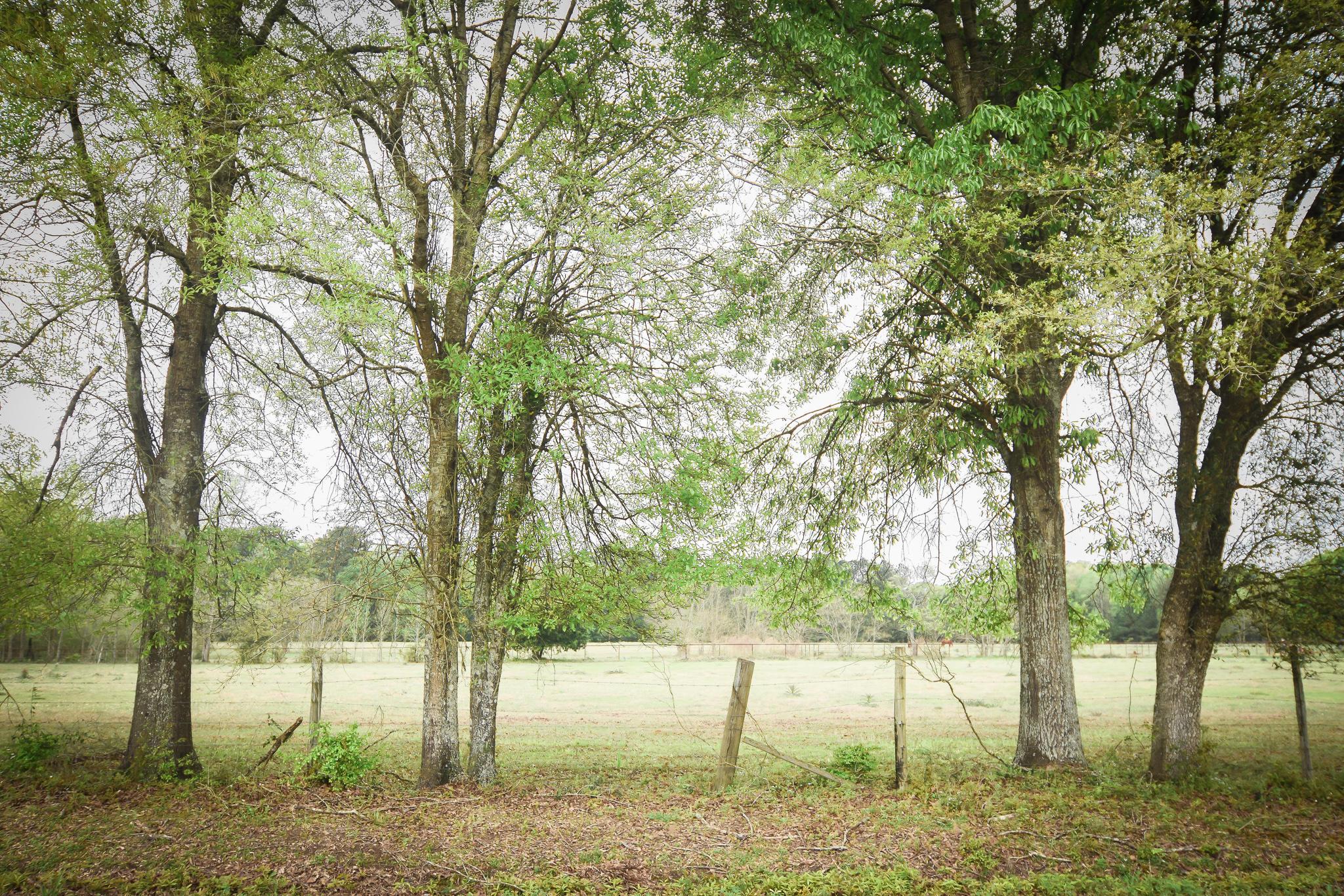 DeRidder land for sale,  TBD Tract 2 Grantham Road, DeRidder LA - $55,500