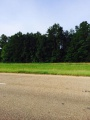 Anacoco land for sale,  TBD US HWY 171 South, Anacoco LA - $30,000