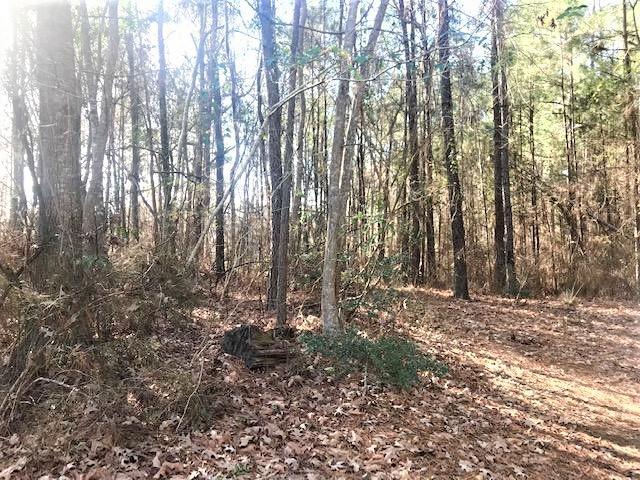 Leesville land for sale,  Timber Trail Ln., Leesville LA - $25,000
