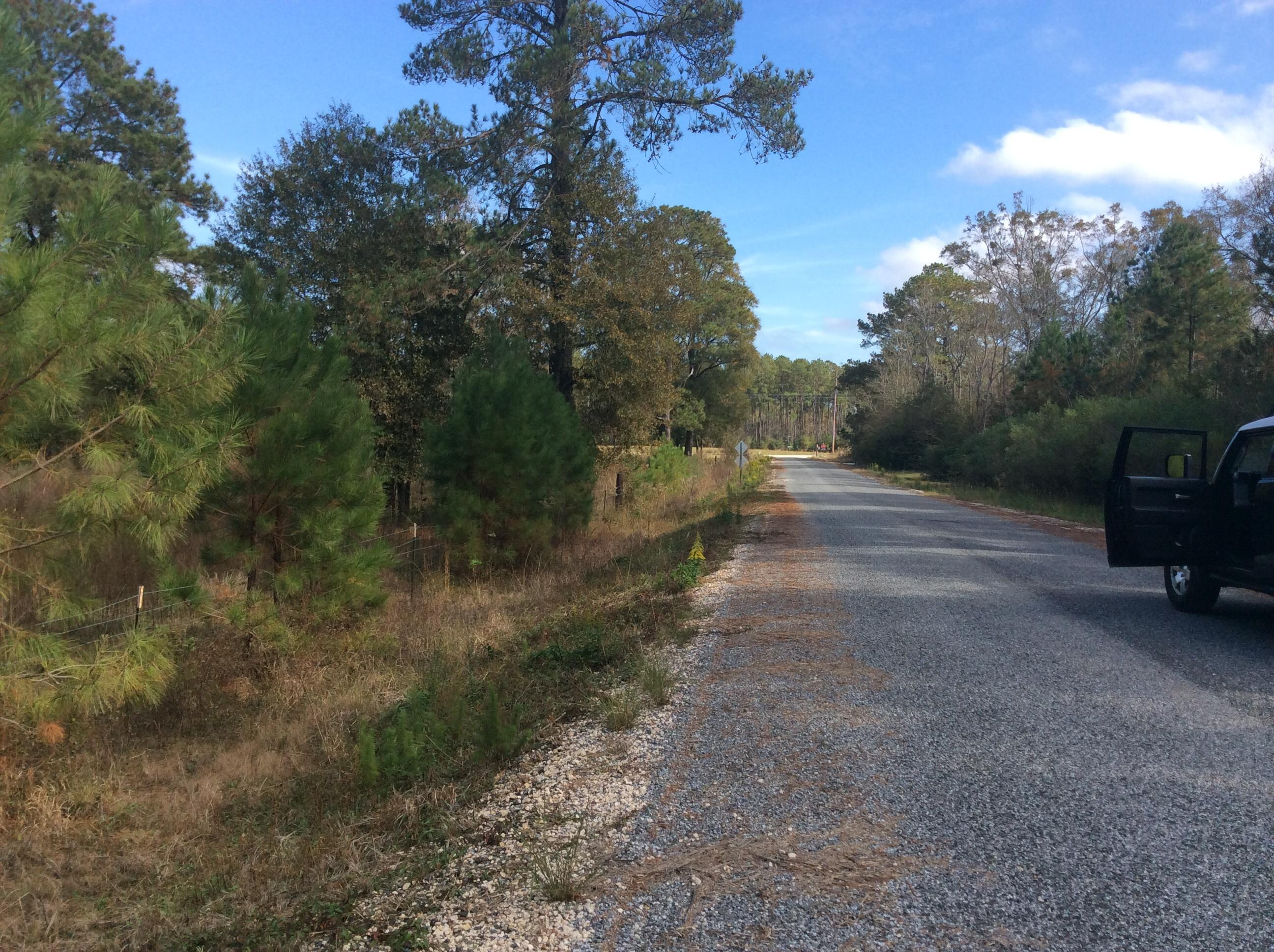 Longville land for sale,  US-171, Longville LA - $65,000