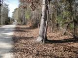 DeQuincy land for sale,  WINDHAVEN RD,TBD, DeQuincy LA - $14,000
