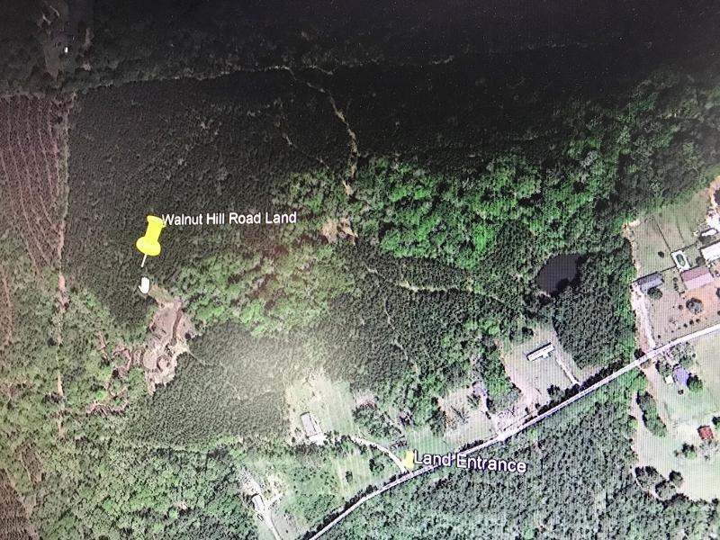 Leesville land for sale,  Walnut Hill Rd, Leesville LA - $189,000