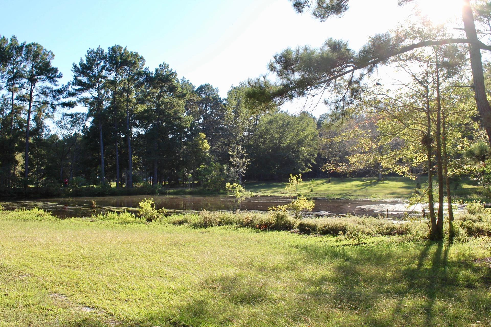 Leesville home for sale, 3142/3130 Savage Forks Rd, Leesville LA - $149,900