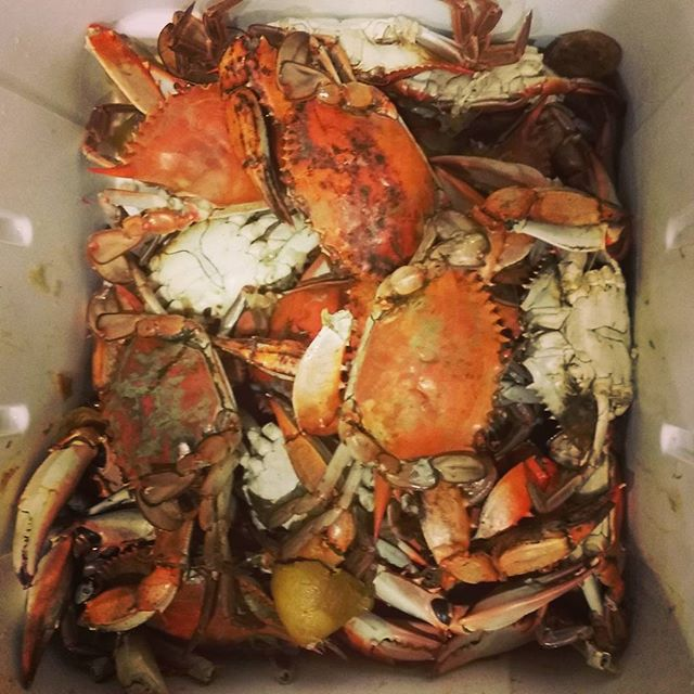 Blue crab - a Louisiana dish