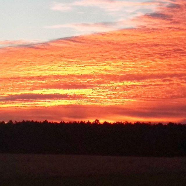 Sunset on Liliedahl Road the other evening. Liliedahl DeRidder Rosepine Louisiana sunset