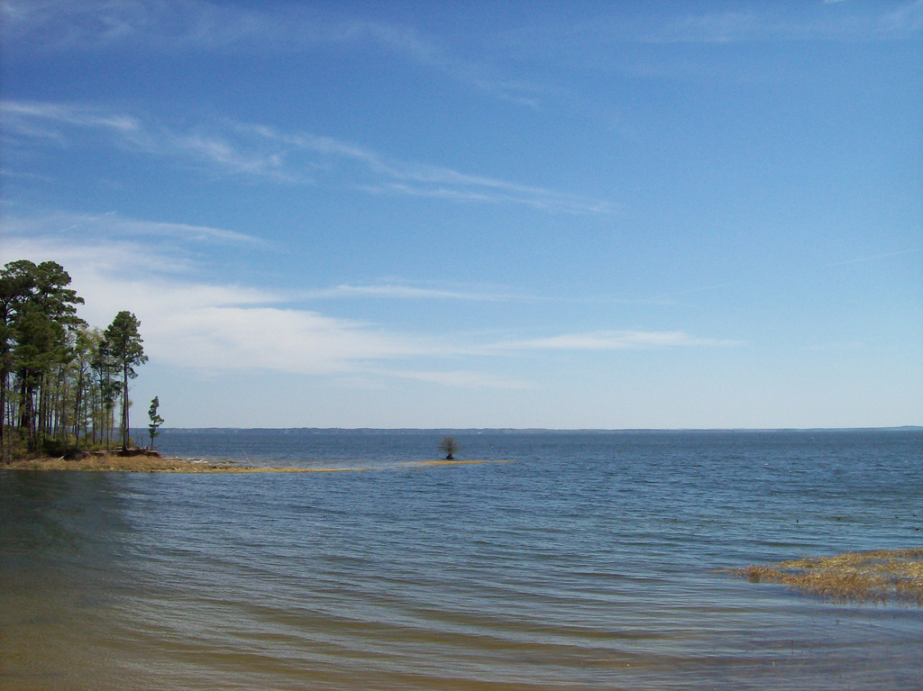 Toledo bend best fishing lake in the country for Toledo bend fishing